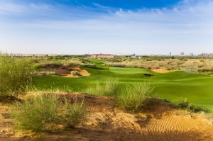 The 17th green at Dalu Dunes. Picture by Ryan Farrow.