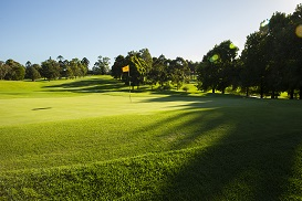 For the second year in succession, Castle Hill Country Club will play host to the Faldo Series Australia Championship.