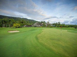 Paradise Palms - Golf